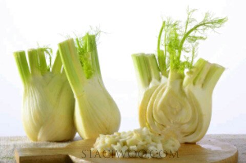 Fennel Juice of vegetables