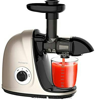 Picberm Best Slow Masticating Juicer for Beginners with Quiet Motor